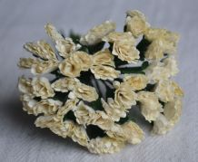 IVORY STATICE / LIMONIUM gypso Mulberry Paper Flowers